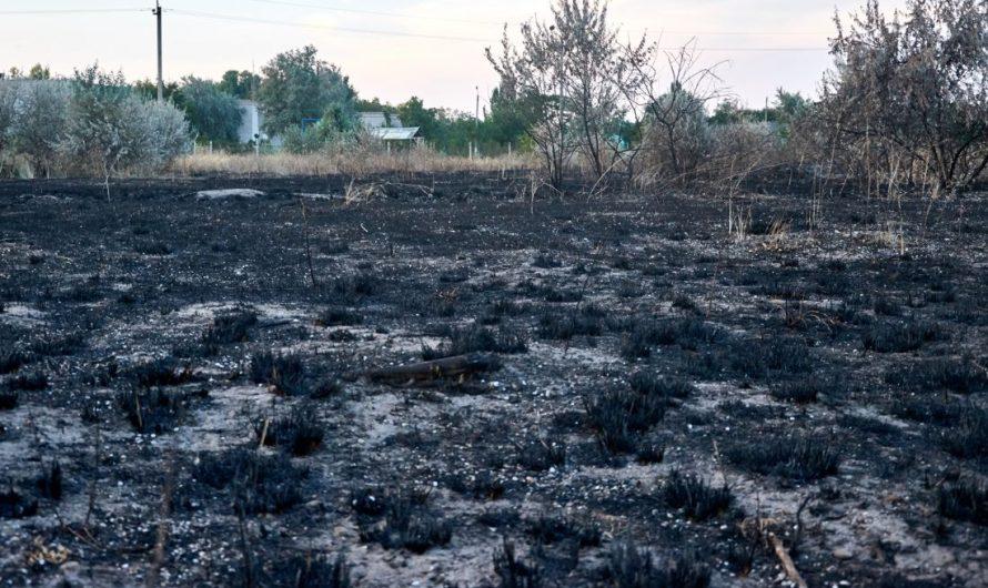Verbrannte Erde in Pinneberg