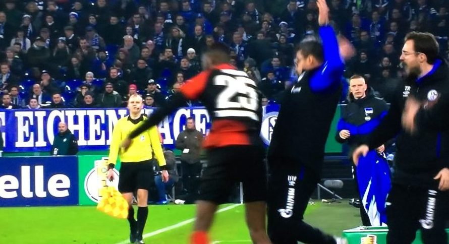 Affenschande auf Schalke