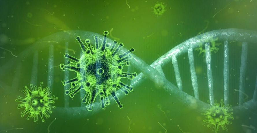 PCR-Test – Indikator oder Instrument?